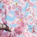 10 reasons why I love spring