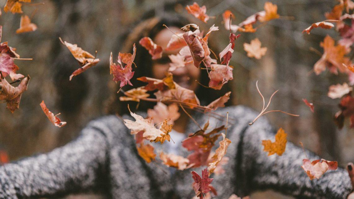 Redenen om van de herfst te houden